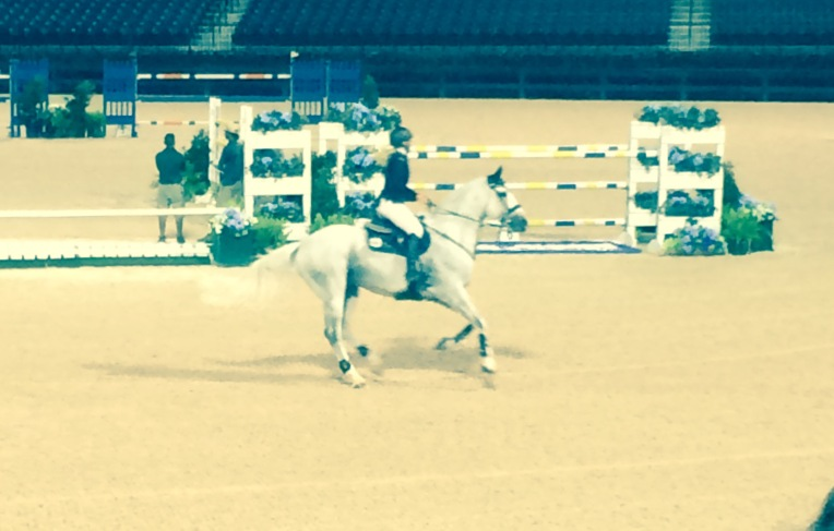 Kristen VanderVeen and her gorgeous stallion won the Grand Prix this past Saturday night.